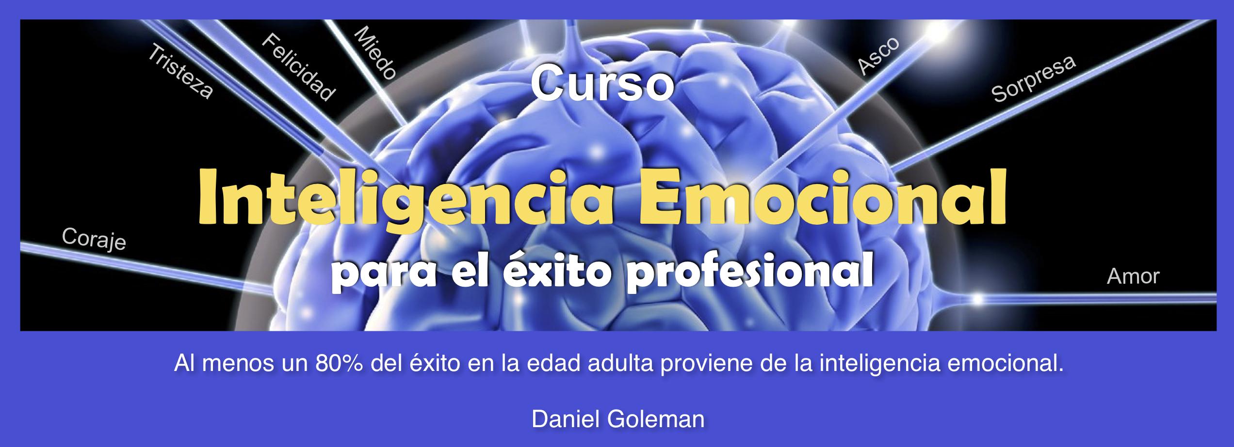 Inteligencia Emocional en la Práctica Profesional