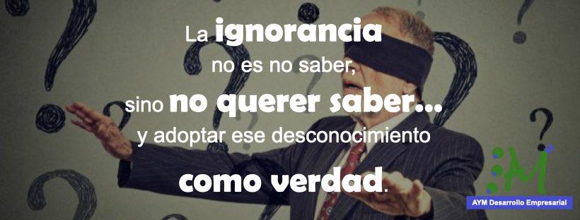 frases_educacion.005