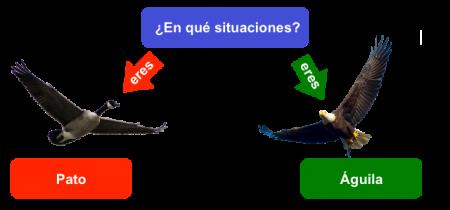 Siatuaión pato o aguila